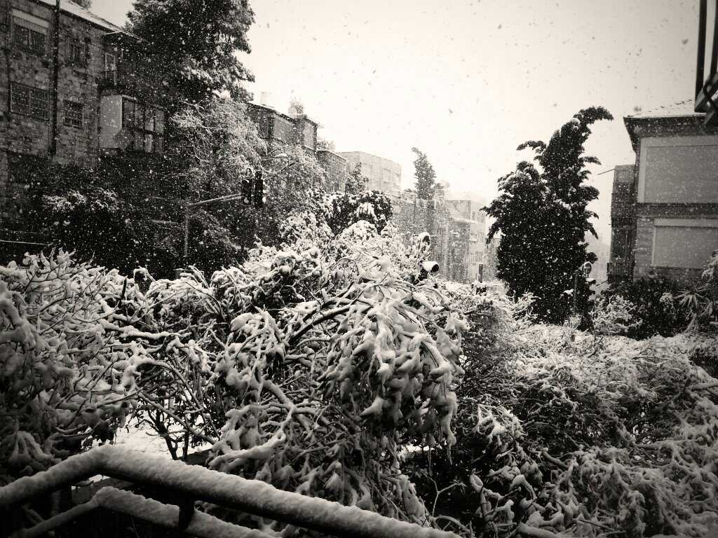 Schnee, Schnee, Schnee. Jerusalem, Dezember 2013
