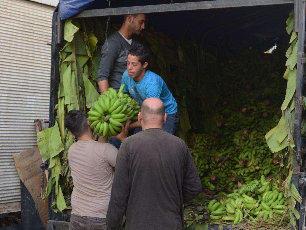 Bananenlieferung