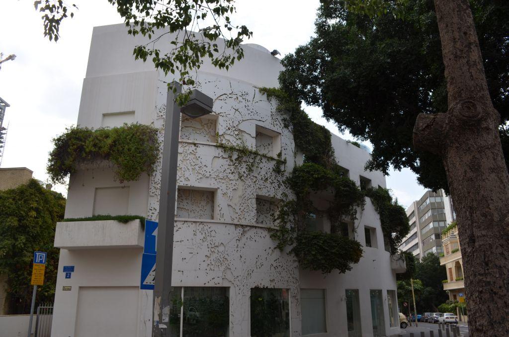 Ein grünes Bauhaus