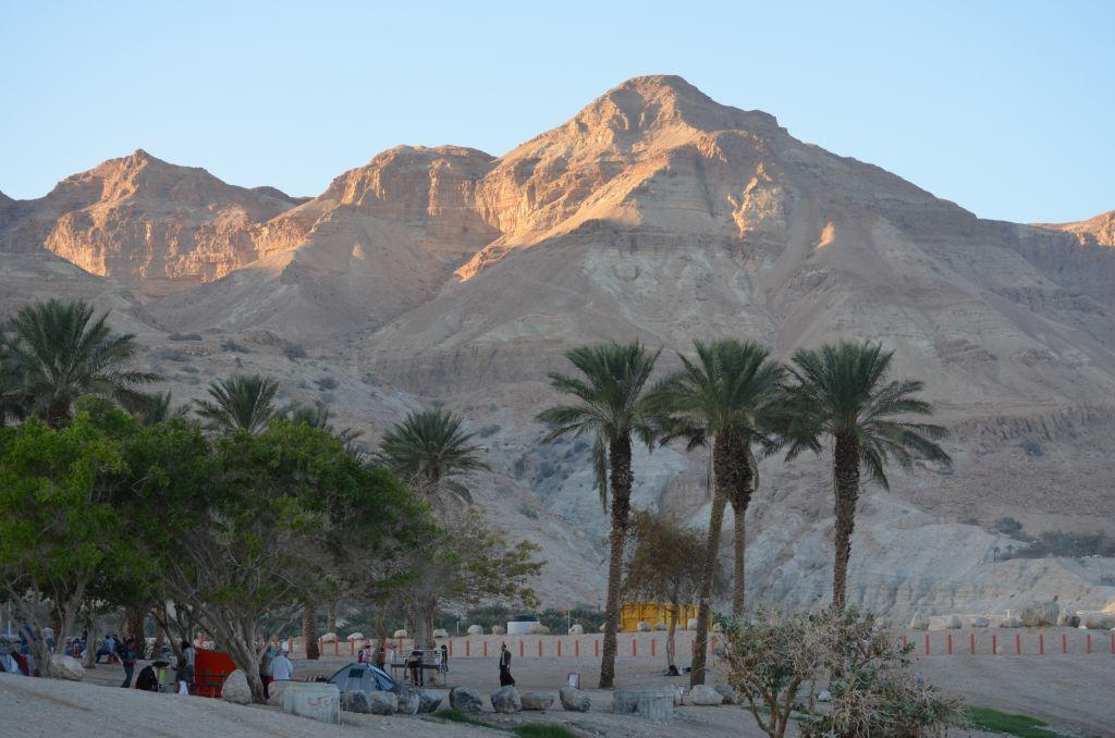Die Wüste lebt, Part 1. Ein Gedi liegt am Toten Meer und ist seit Uhrzeiten eine fruchtbare Oase, Januar 2014