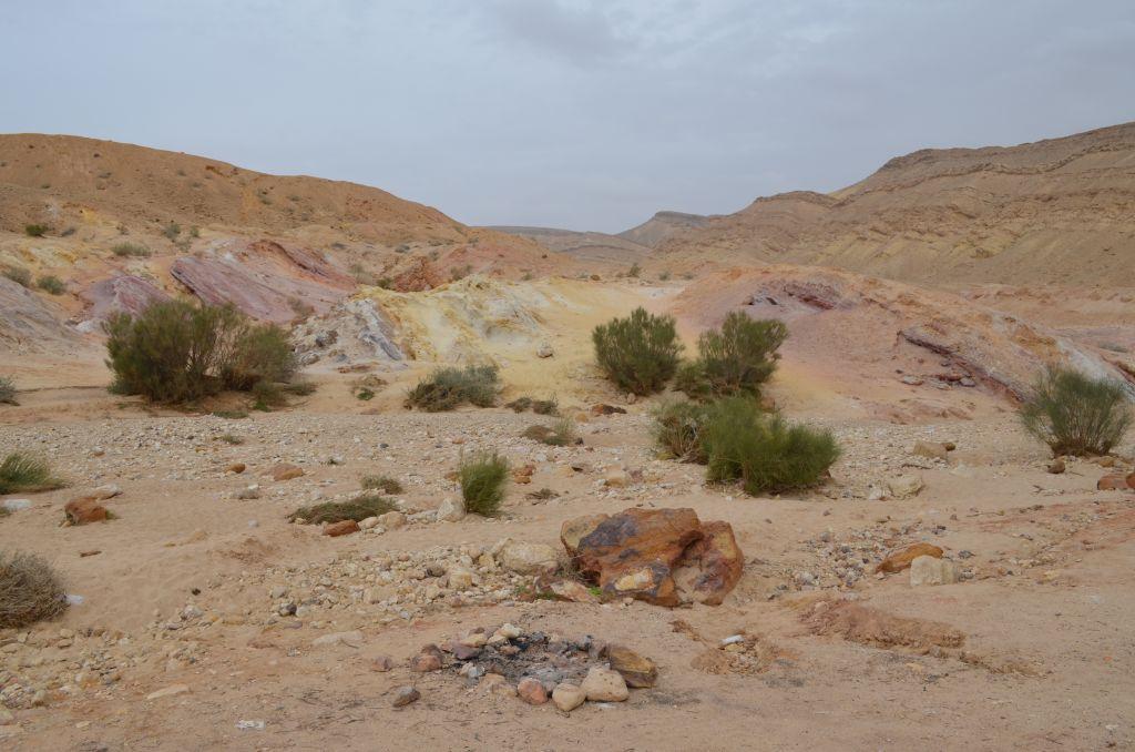 Immer wieder erscheint die schroffe Wüste sanft und bunt, Januar 2014